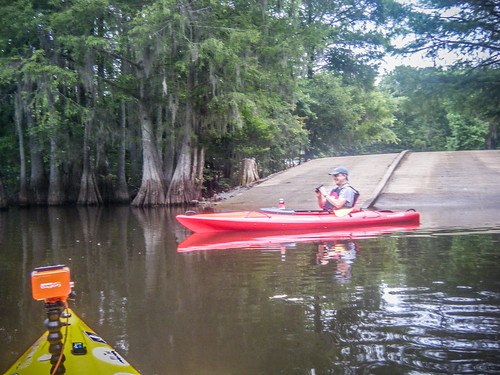 Sparkleberry Swamp-110
