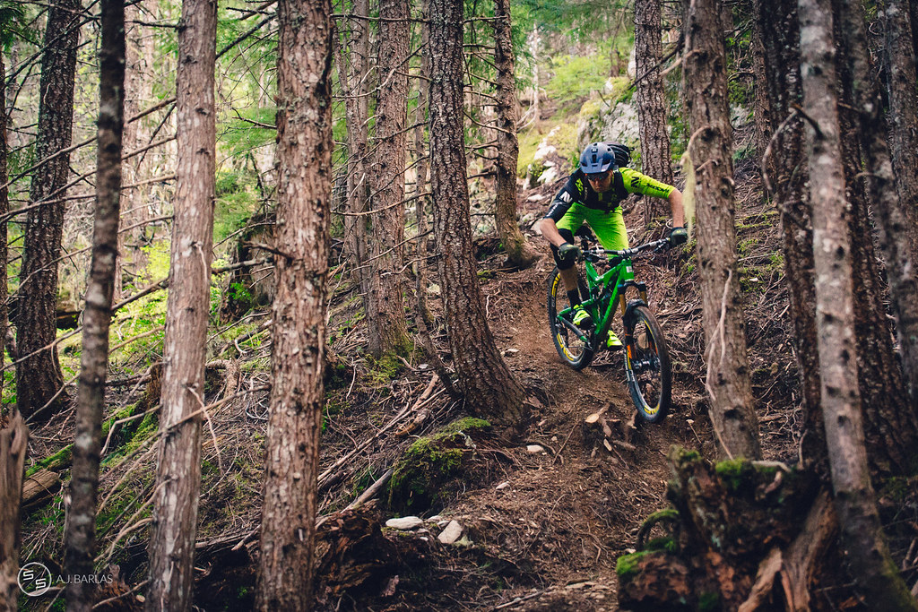 Dylan Wolsky among the textures of Bush Doctor, Whistler