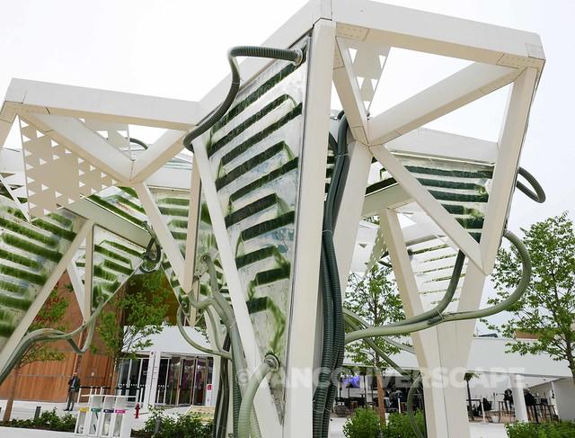 Milan Expo: Interactive micro-algae pavilion by ecoLogicStudio