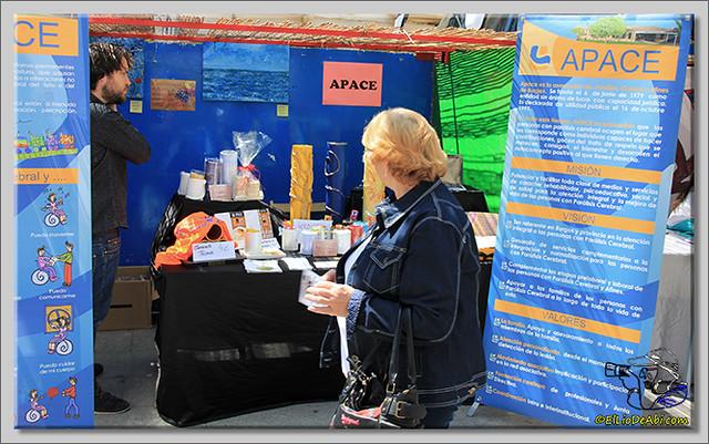 Feria de Asociaciones en Briviesca (14)