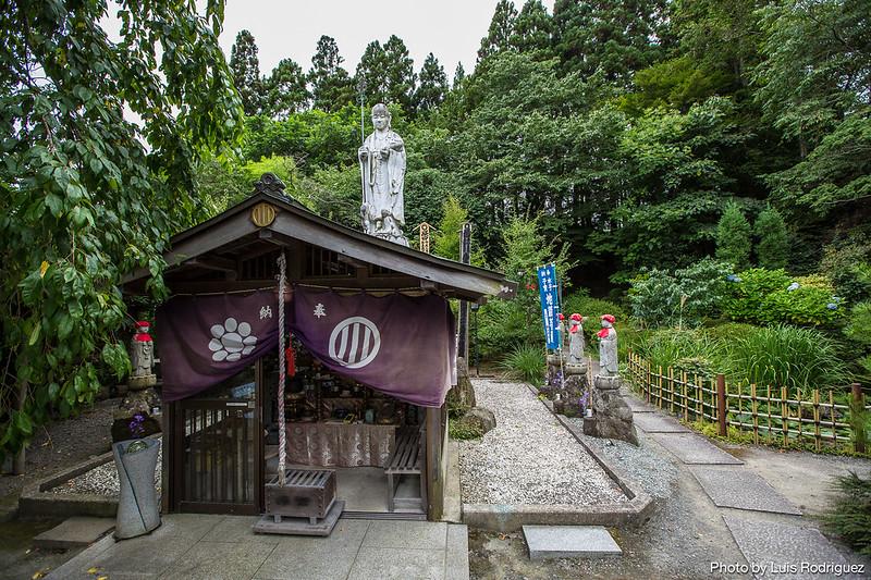 Matsushima-81