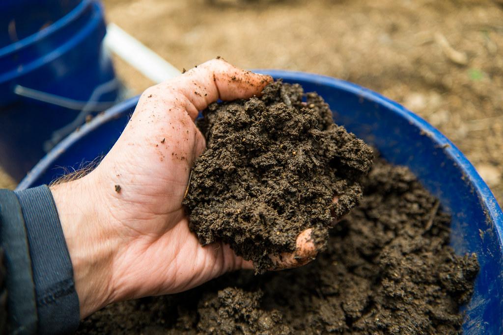 Image result for soil