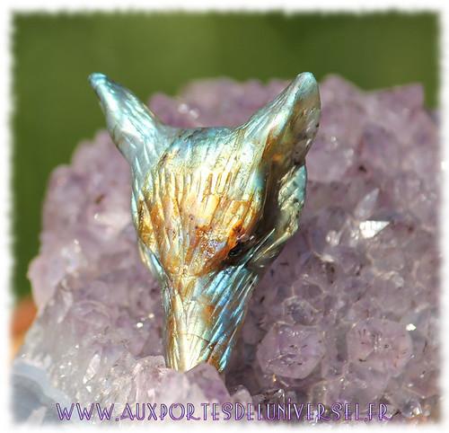 Aux Portes de l'Universel Collection Esprit du Loup