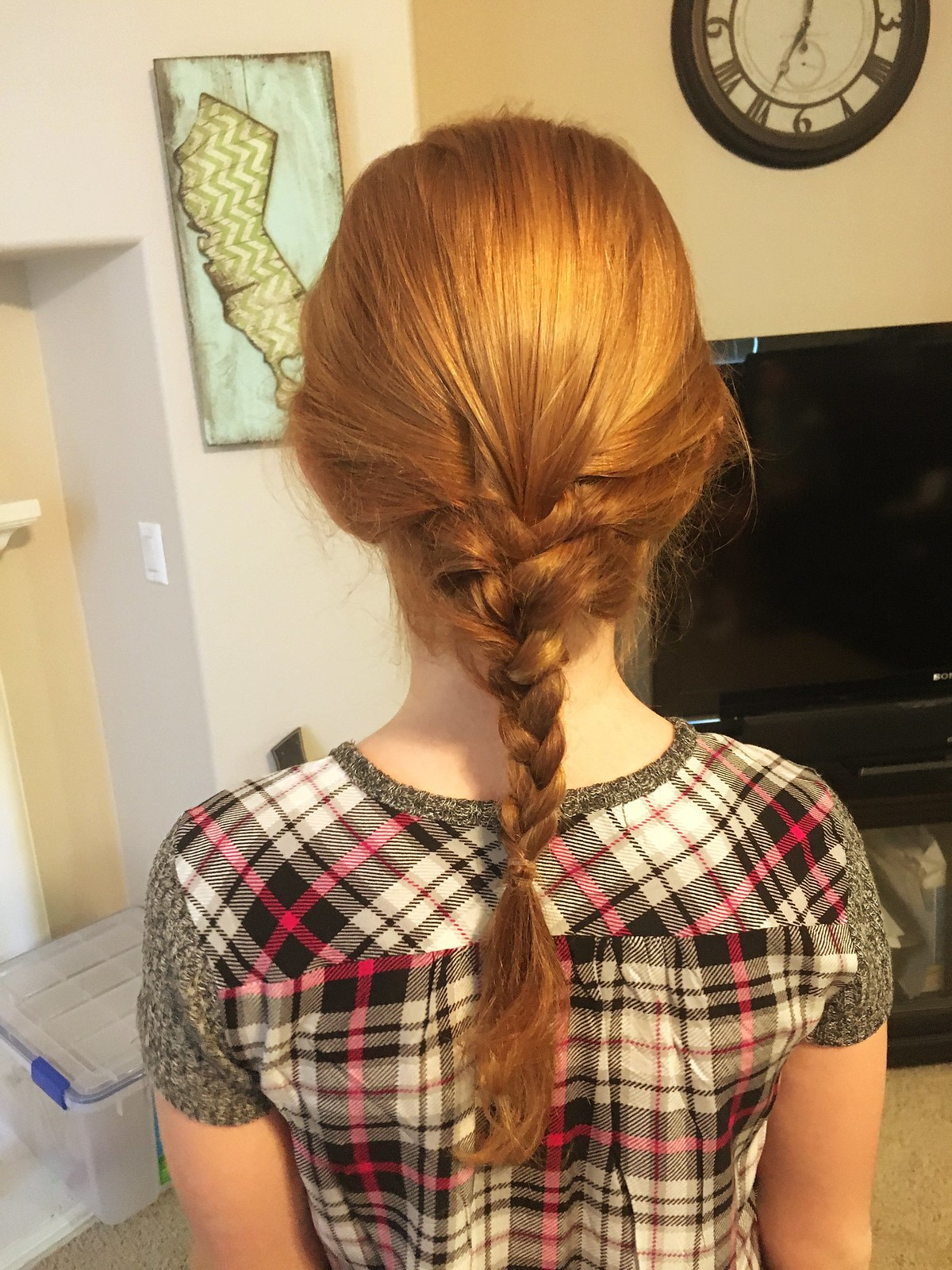 Red hair braid