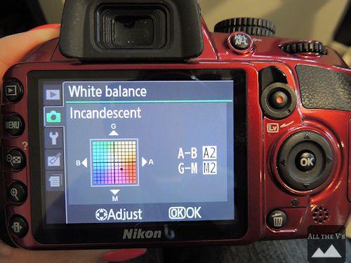 white balance adjusting Nikon D3100