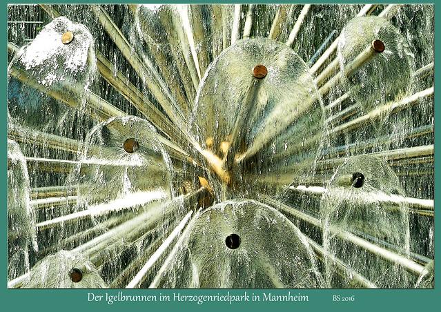 """Einer der Brunnen im Mannheimer Herzogenriedpark befindet sich direkt am Haupteingang. Offiziell heißt er """"Igelbrunnen"""". Auf der Website des Herzogenriedparks kann man lesen, dass er """"mit seiner Kugelgestalt aus metallenen Stäben"""" zwar gefährlich aussehe, """"doch seine Wasserstacheln kitzeln und kühlen mit ihren kleinen Fontänen angenehm Finger und Füße"""". Ich finde, aufgrund seines Aussehens könnte dieser hübsche kleine Brunnen auch """"Pusteblumenbrunnen"""" heißen. - Foto: Brigitte Stolle, August 2016"""