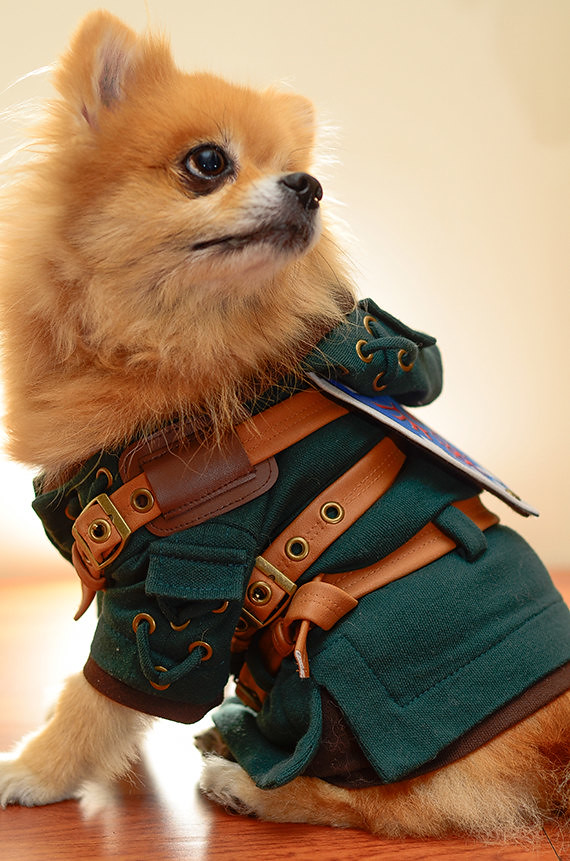 Legend of Zelda - Link Dog Cosplay