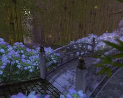 紫陽花の路_02