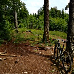 BlauenTrails #delemont #basel #mtb #vtt #mountainbiking #specialized #camber_expert_evo #sonnepur #stravaphoto #strava