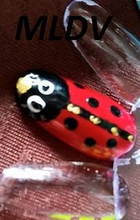 nail art cocinelle