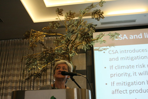 Polly Ericksen at the climate-smart agriculture workshop