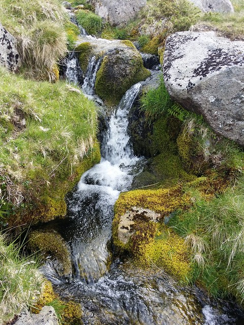 Stream on the way up to Lints Tor