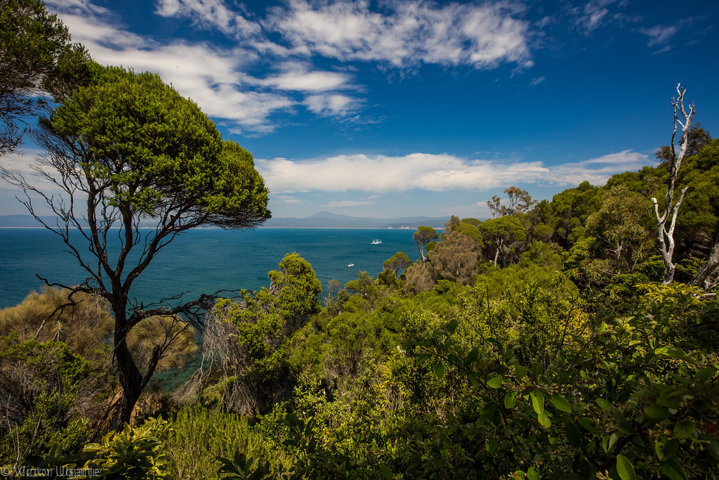 Jervis Bay, NSW-7.jpg