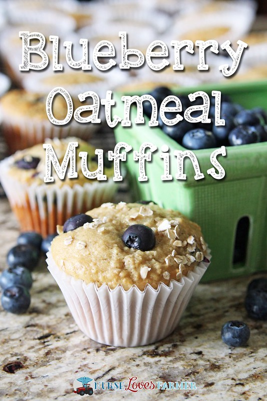 Blueberry Oatmeal Muffins. Wholesome muffins packed full of blueberries that the kids will love!