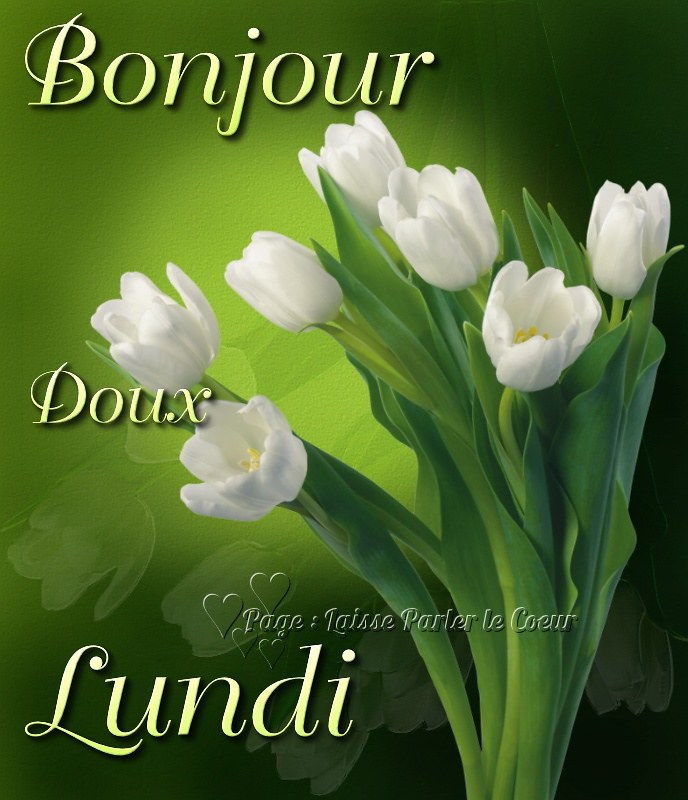 Bonjour à vous, les amis ce joli bouquet de fleurs pour vous souhaite  une excellente