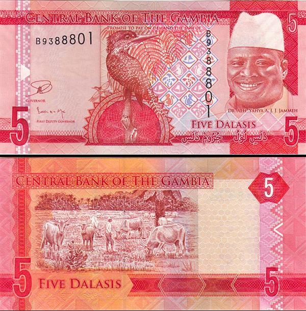 5 Dalasis Gambia 2014