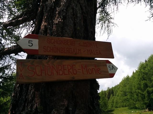 Wegmarkierung Nr. 5 Schönberg