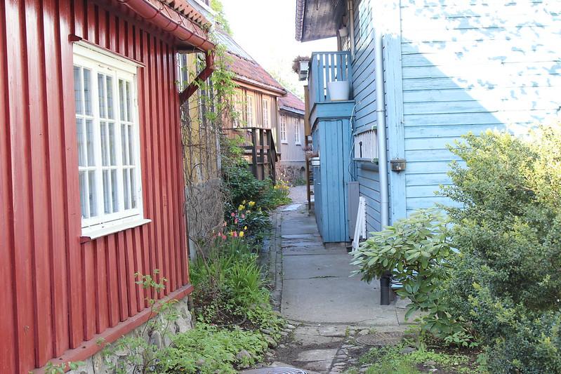 Oslo, Et dryss kanel