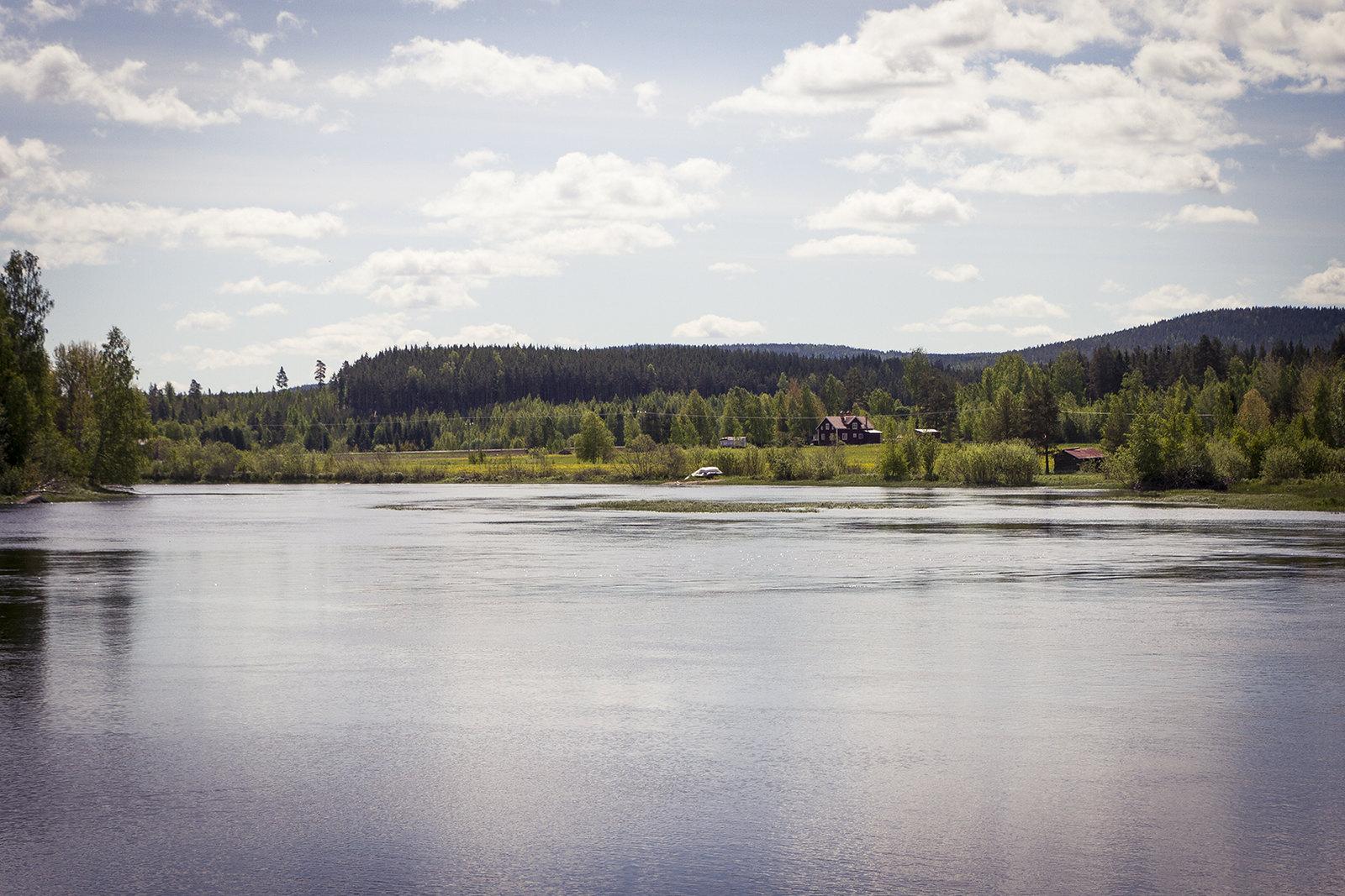 Sommar i Hälsingland www.traningsgladje.se