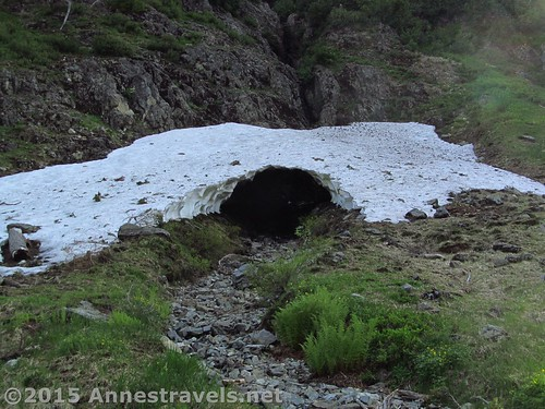 Snow cave along the Lake Ann Trail, Mt. Baker-Snoqualmie National Forest, Washington
