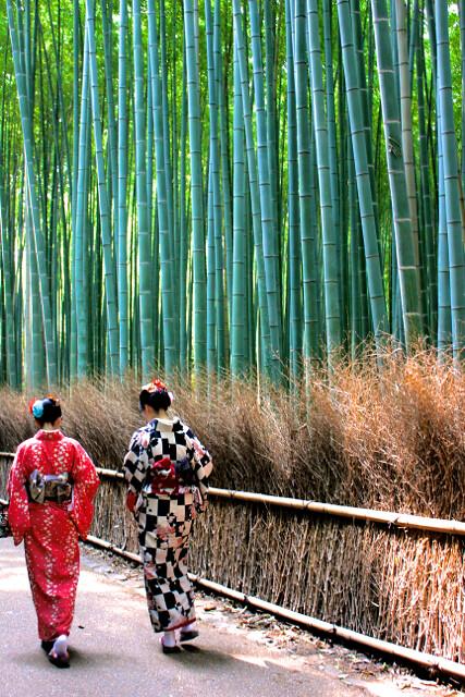 Cultured in Kyoto