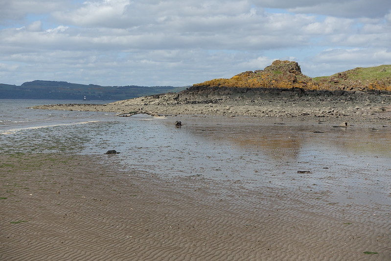 Cramond Island, 25 May 2015 099