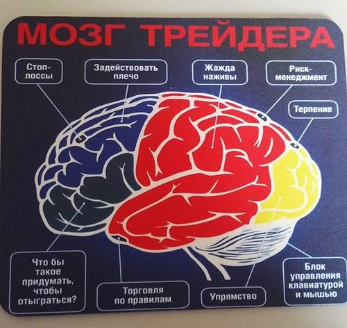 trader brain