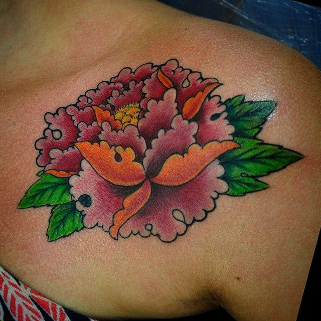Jb Flor Peonia Cores Farben Peonia Tatuagem Jbjeffers Flickr