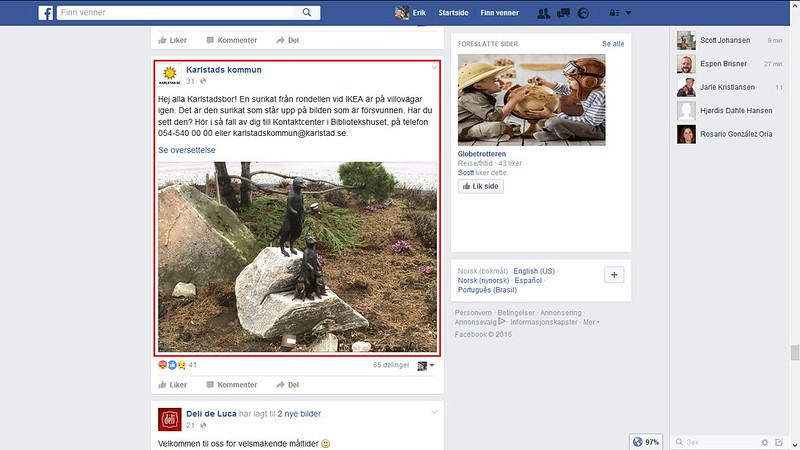 surikat forsvunnet