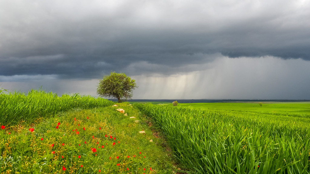 hd spring rains wallpaper - photo #14