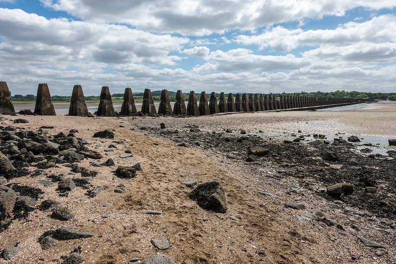 Cramond Island, 25 May 2015 025-1-2