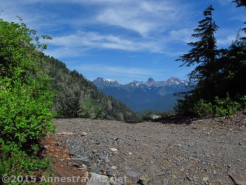 The Canadian Cascades from near the trailhead of the Lake Ann Trail, Mt. Baker-Snoqualmie National Forest, Washington