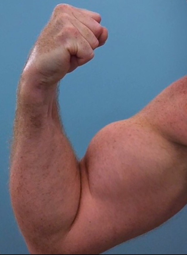 Bulging Biceps Muscular Biceps 2014uknz Flickr