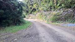 Motu Rd and Pakihi Trail Ride