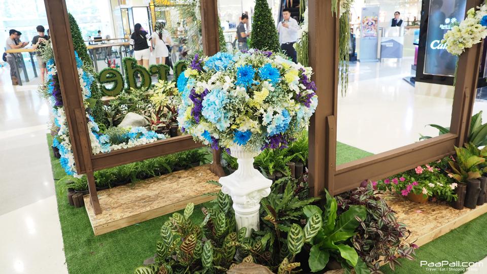 Garden  (9)