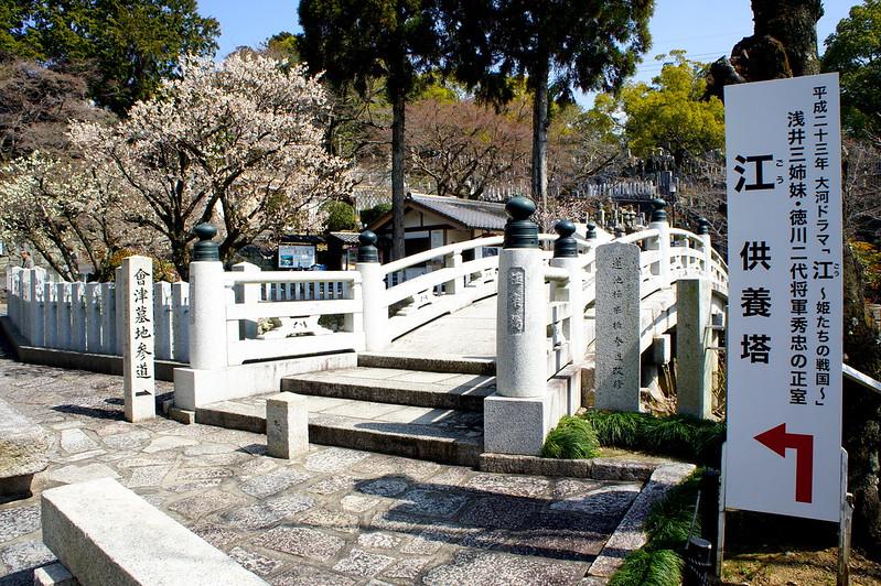 極楽橋・蓮池/金戒光明寺(Konkai Komyo-ji Temple / Kyoto City) 2015/03/17