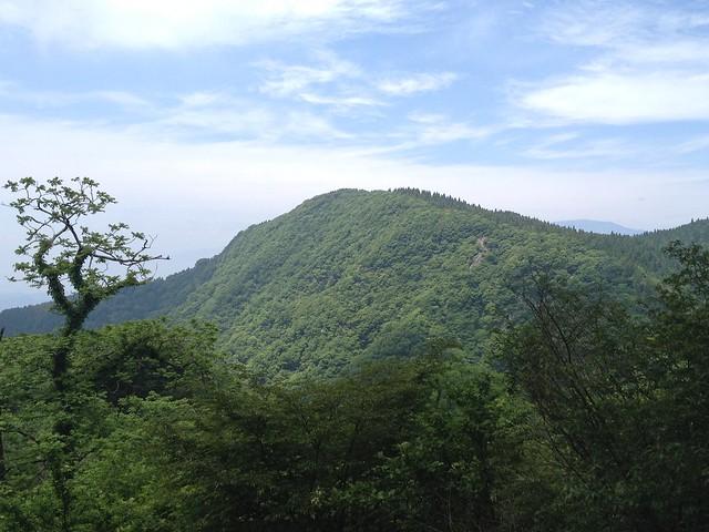 霊仙山 横道登山道 美ヶ原より阿弥陀ヶ峰