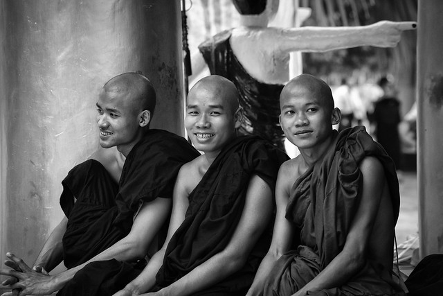 The Monks of Yangon