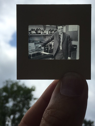 35 mm slide, held between thumb and forefinger, of E. O. Wilson at a lab bench