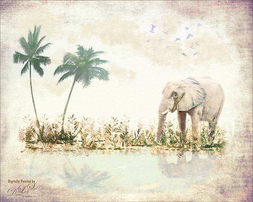 Composite image of an elephant, palm trees, and some fancy brushes