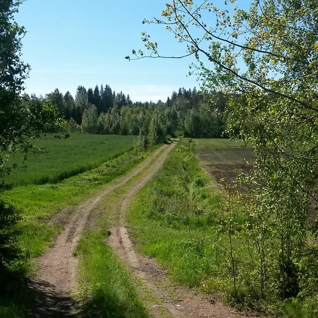 metsätie, Kokemäki, Suomi