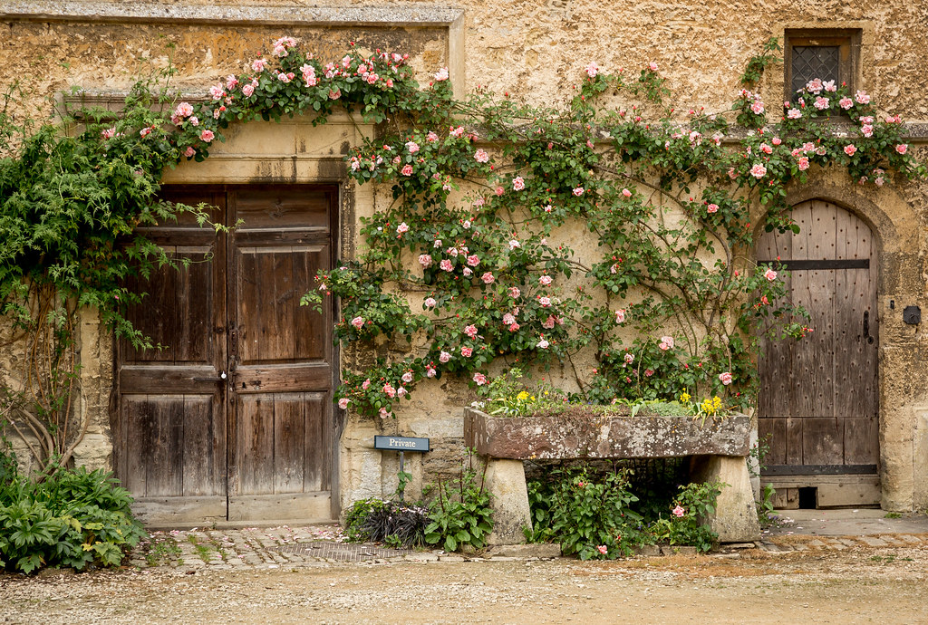 ... North Courtyard at Lacock Abbey Doors | by IceNineJon & North Courtyard at Lacock Abbey Doors | Vines grow over dooru2026 | Flickr