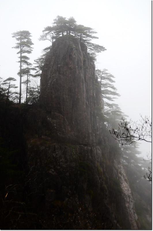 黃山奇石 1