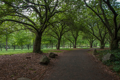 Brooklyn Botanic Garden May 2015 Late May Aloucha Flickr