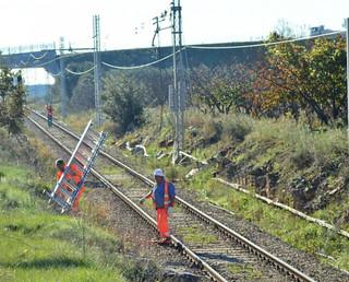 Gli operai all'opera per ripristinare la linea (foto Amo Casamassima)