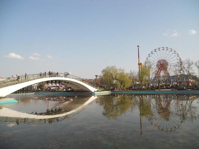 青年公園風景