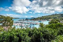 Hamilton Island Marina.-1
