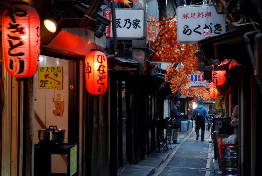 Shinjuku Omoide yokocho yakitori alleys