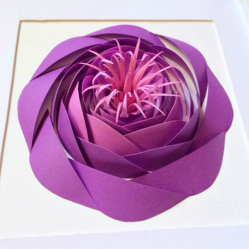Paper Sculpture Flower by Ashley Chiang