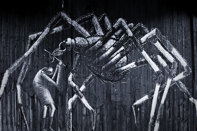 Spider by Phlegm
